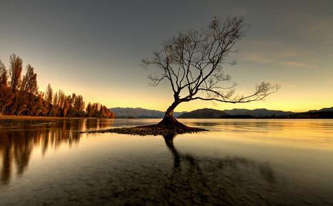 人生充满痛苦和不安的根源是什么?