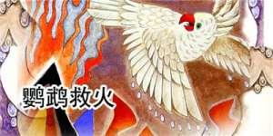 鹦鹉灭火的故事